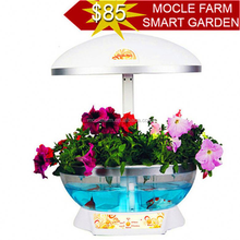 New product widely used crafts for home decor