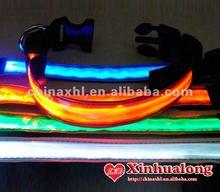 Archived deal: Nylon LED Dog Collar & Lead - GrabOne