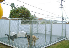 10x10x6 foot wire mesh fence dog cages custom made dog cages durable dog kennels