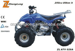 The Cheapest mini electric atv with CE