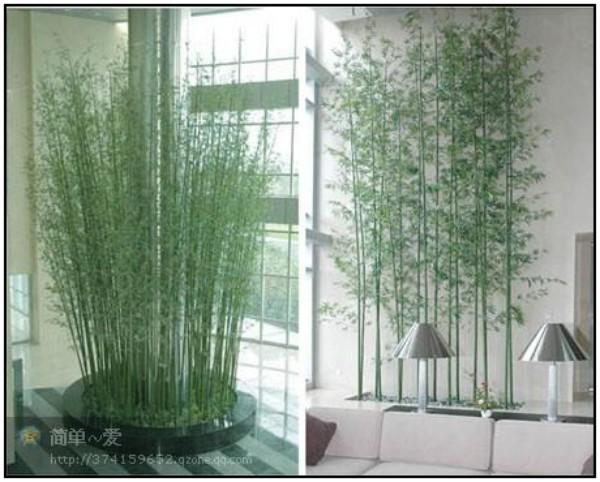 oasis mobiliario jardim:artificial jardim oasis pátio mobiliário de seda de bambu chão