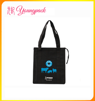 Factory OEM High Quality Fitness Cooler Lunch Bag