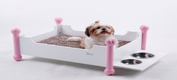 new design pet playing bed /cat toys bed/pet hot sale bed