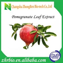 Pure Organic Pomegranate Leaf Extract Powder 30%