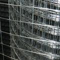 1/4 pulgadas galvanizado soldada de malla de alambre