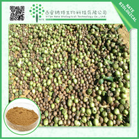 Wholesale Chinese herbal Tea Seed Extract Powder 98% Tea Saponin
