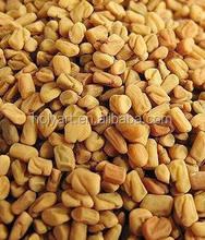hot sale fenugreek seed extract