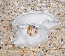 Beautiful ceramic conch ornaments