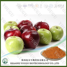 Free sample for trial restrain melanin phlorizin powder,HACCP KOSHER FDA green apple extract