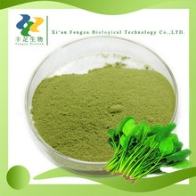 2015 Hot selling Spinach Powder,High Quality healthy Spinach powder,organic spinach dried Powder wholesale,Free sample
