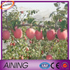 100% HDPE anti hail net for apple tree
