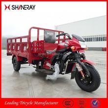 China OEM New Products Chopper Trike/250Cc Trike Chopper/Trike Chopper Three Wheel Motorcycle