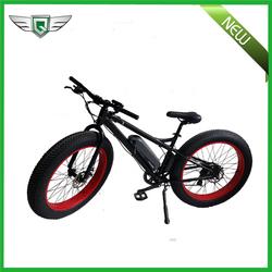 Leisure power assisted adult electric bike motor mountain bike