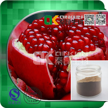 High Quality 100% Natural Pomegranate Extract Powder Plant Extract