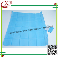 Sterile Soft Beauty Salon Disposable Bed Sheet Roll/Draw Sheet/Underpad/Bed Covers