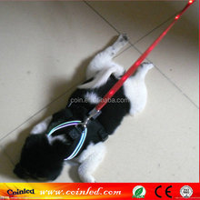LED Glow Collar Dog Puppy Pet Tag Flashing Light Safety Leash Nylon Collar Harness