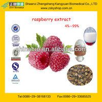 GMP Factory Provide 100% Natural Raspberry Extract