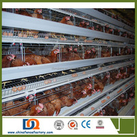 Cheap egg laying chicken cages for chicken coop