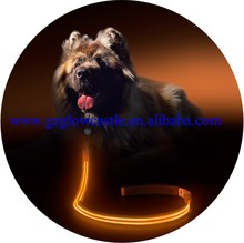 Orange LED Light Up Pet Leash