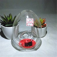 Best Selling Products Glass Vases Flower Vases