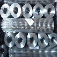 welded wire mesh (made in China)