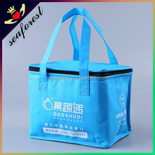 Hotsale cooler lunch bag,personalized lunch cooler bag for frozen food
