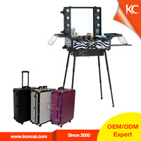Professional Aluminum Makeup Trolley Luggage Case with Lights and Clasp Key Lock