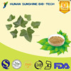 ISO/HACCP Factory Supply 100% Natural Chinese Ivy Extract with 10% Hederacoside C