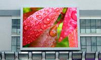 high quality p16 led hd china video screen/hd sex video p16 led display