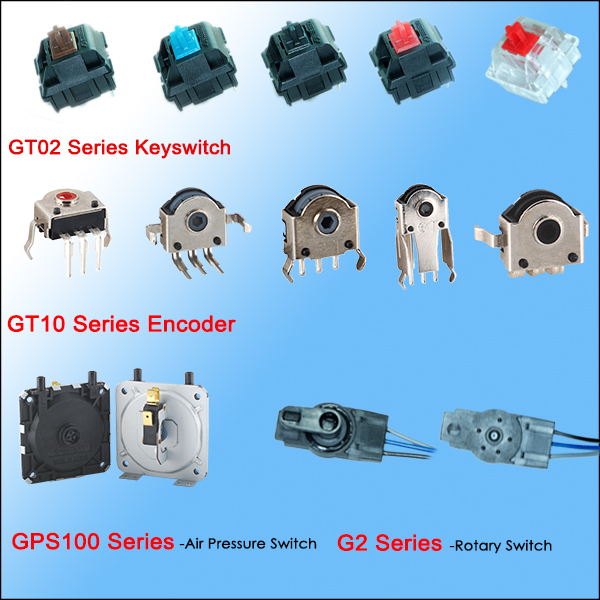 micro switch factory China