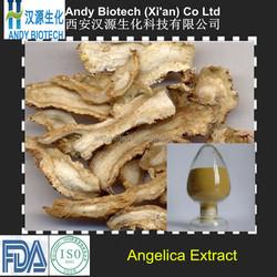 High Standard 10:1 angelica dong quai extract