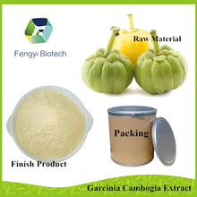 high quality factory price garcinia cambogia extract / herbal extract