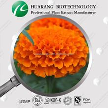 Marigold P.E.,marigold flower extract,marigold extract