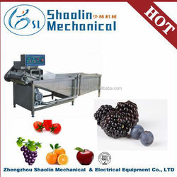 New Style factory direct supply bubble fruit and vegetable cleaning machine with best service