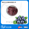 Factory Supply Extract of Blueberry Powder