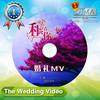 chinese cd replication in china.wedding video