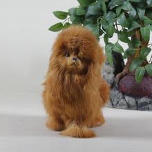 merci novità da elementi del cane China Chow cane chow
