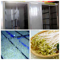 mung bean sprouter with very good price and service