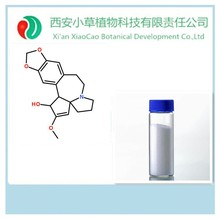 Pure Natural Cephalotaxus fortunei extract,Cephalotaxus fortunei,cancer cure