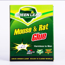 Hot Sale Widely Used Mouse and Rat Killer Glue,Mouse and Rat Catcher Glue Trap,CardBoard Mouse Glue Trap