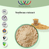 Natural free sample Daidzein soybean extract,Kosher FDA HACCP Glycine max soybean extract,40% soy isoflavones soybean extract