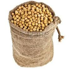 Soya Bean for Sale( Export GMO & NON GMO)