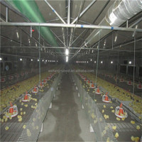 High quality automatic poultry house feeding equipment for chicken broiler