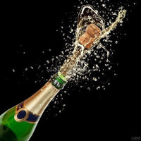 French Champagne Brands Export and Import Agent