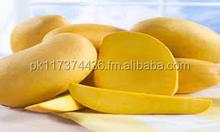 Fresh Farm Mangoes