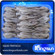 Fresh Frozen Japanese Squid Tentacle