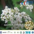 orgánica de trigo sarraceno flavonoides