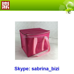 Outdoor Non Woven Cooler Picnic Bag for Beer with own factory