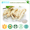 High quality Tested by HPLC American ginseng root extract