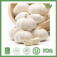 Fresh garlic supplier in china